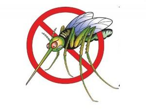 Insectifuge efficace